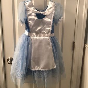 Other - Alice in Wonderland dress